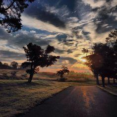 Keswick, VA in Albermarle County