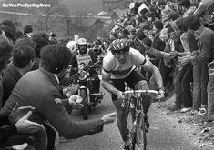Amstel Gold Race 1980, Jan Raas won the race.