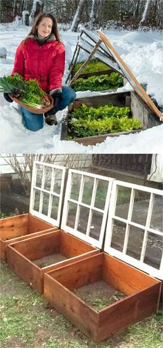 Outdoor DIY Inspiration : 42 BEST tutorials on how to build amazing DIY greenhouses , simple cold frames and cost-effective hoop house even when you have a small budget and little carpentry skills! Everyone can have a productive winter garden and year round harvest! A Piece Of Rainbow ...