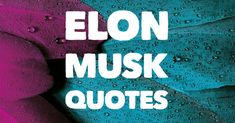 Great collection of Elon Musk quotes. Elon Musk is an amazing innovator and has ties with Paypal, Tesla, the Boring Company and SpaceX. Elon Musk Quotes, Create A Company, Intelligence Quotes, Find Quotes, Just Believe, Supply Chain, Artificial Intelligence, Business Quotes, Ties