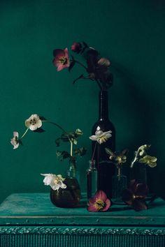 swallows.damson.green.burgundy.pastell
