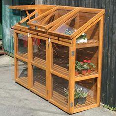 Mini Greenhouse. I want one.