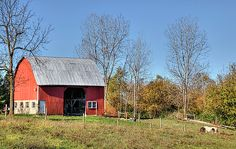 Barn Under A Clear Blue Sky  The red barn looks down over the pasture, a horse is grazing below. This photograph was taken in central Ohio.
