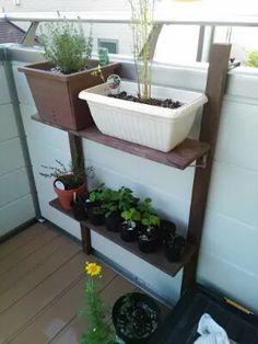 我が家は庭もあるにはありますが、現状ほぼベランダのみで植物栽培をしております。が、肝心のプランター置き場に悩んでおりまして…いい具合の棚を望んでいました。結局自作することとなり、作った過程と使い心地を紹介いたします。ベランダにちょうどいい棚 Planters, Shelves, Storage, Garden, Furniture, Home Decor, Purse Storage, Shelving, Garten