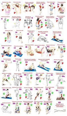 Infografía ilustrada de tabla de estiramientos para el deporte.