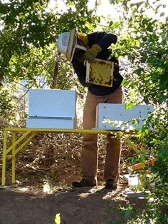 While working my hive, I have a place to put supers instead of in the dirt.