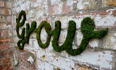Grass wall - cheers SAK
