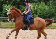 Unsere Markenbotschafterin Lisa hat einen Tipp für Reiter. Sie denkt, dass Reiter Sport machen soll, um genauso fit wie sein Pferd zu sein! Lies ihr Blog 'Reiten statt Fitnessstudio?' auf unserer Webseite