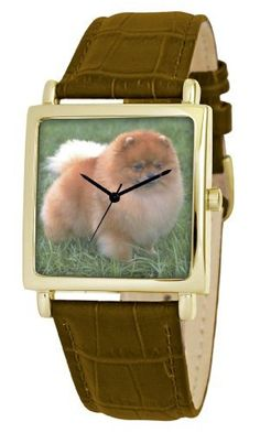 American Kennel Club Men's D1826S012 Pomeranian Gold-Tone Brown Leather Watch American Kennel Club. $14.93. Water-resistant to 99 feet (30 M). Precise, high-quality Japanese-quartz movement. Genuine leather strap with buckle clasp. Durable mineral crystal. Officially licensed American kennel club breed artwork