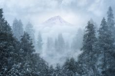 A Winter's Dream - www.vcimagery.com https://www.etsy.com/shop/HorizonPhoto?ref=hdr_shop_menu This one is obviously a surreal interpretation. I had uploaded a version  a few months ago but I never really liked it.   The mountain peak in this shot was actually hidden by the passing snow storm so I took a shot of the trees and then waited a few hours to get a shot of the peak once the snowfall had ceased. That and a heavy smathering of photoshop! I consider this image more of an experiment…