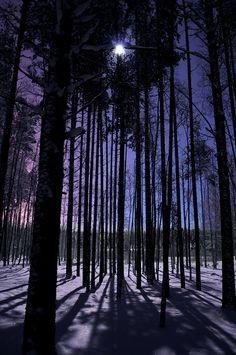 Moonlight, Norrbotten, Sweden