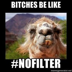 I JUST DIED Instagram Bitches be like #NoFilter.. ...