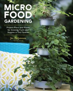 Project Plans and Plants for Growing Fruits and Veggies in Tiny Spaces by Jennifer McGuinness - National Garden Bureau Author Member Small Space Gardening, Gardening Books, Gardening Tips, Fruits And Veggies, Growing Vegetables, Connecticut, Porches, Dyi, Strawberry Plants