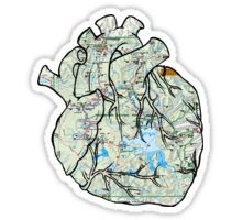 Wanderlust Heart stickers featuring millions of original designs created by independent artists. Anatomical Heart, Sticker Design, Wanderlust, Stickers, Artist, Travel, Viajes, Artists, Destinations