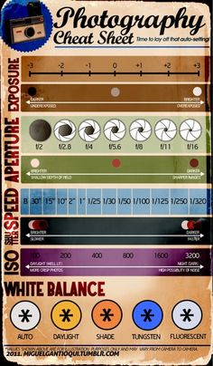 Infographic Poster Photography Cheat Sheet - Good to Know Photography Cheat Sheets, Photography Lessons, Photography Tutorials, Image Photography, Digital Photography, Jewelry Photography, Photography Settings, Photography Business, Photography Basics