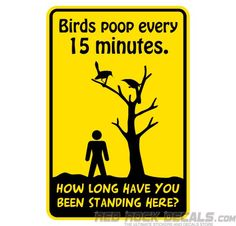 Plastic Sign Birds Poop Every 15 Minutes - How Long Been Here? - Funny Sign - Cool Sign - Funny Warning Sign - Red Rock Decals