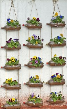 Zo'n verticale tuin van lege flessen kun je eenvoudig zelf maken. En het kost bijna niets. Niet alleen mooi met viooltjes, maar ook met kruiden of hangende eenjarigen.
