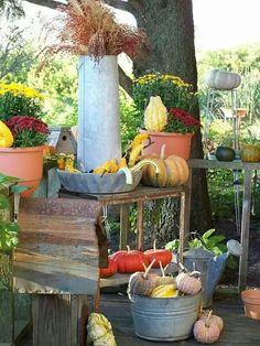 Garden Fall Display