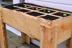 Moestuinieren wordt een eitje met deze handige kweektafel op poten. De kweektafel is 70 cm hoog en heeft een afmeting van 100x50 cm. Het lariks douglas hout is onbehandeld. Supertrendy toch?