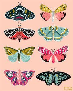 Andrea Lauren Design - Illustration