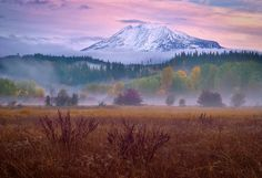 "Dawn, ""Elk Meadows"", Mount Adams, Washington State"