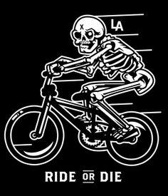 Dead Era - Jim Stark Co. Bmx, Globe Logo, Pro Bike, Bike Illustration, Bike Brands, Cover Tattoo, Bike Art, Album Covers, Bicycle