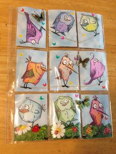 Crazy Birds Pocket Letter