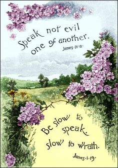 "James 1:19... Slow to speak - slow to wrath.  Slow to wrath - That is, we are to govern and restrain our temper; we are not to give indulgence to excited and angry passions. Compare Proverbs 16:32, ""He that is slow to anger is greater than the mighty; and he that ruleth his spirit than he that taketh a city."""