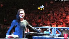 Skrillex attacked by a bee