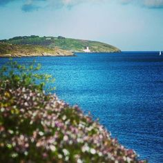Summer in #Falmouth, #Pendennis #Cornwall