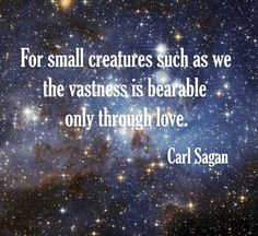 Wise words from Carl Sagan.