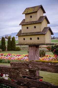 Birdhouse in Your Soul Cool Bird Houses, Large Bird Houses, Decorative Bird Houses, Fairy Houses, Rustic Bird Baths, Birdhouse In Your Soul, Purple Martin House, Bird House Feeder, Bird Feeders