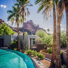 Sanctuary on Camelback Mountain Resort and Spa: Nothing better than a pool with a view.