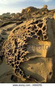 Image result for Tafoni Erosion