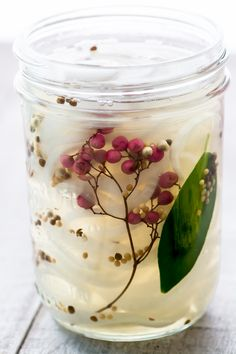Quick Pickled Vidalia Onions ~ this sweet onion pickle takes just minutes ~ use them all summer long on burgers, brats, steaks, sandwiches and tacos!