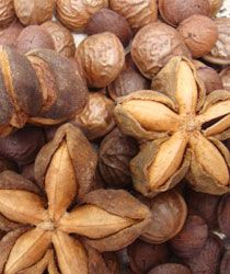 Sacha Inchi Seeds: The Next Energy Superfood - In capsule form 600 mg per day to boost metabolism