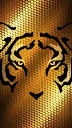 232 Mejores Imágenes De Tigres Uanl En 2019 Cat Art Drawings Y Tigers