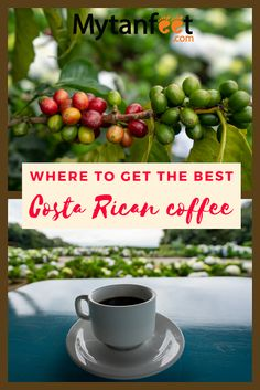 Learn about Costa Rica coffee and find out why it is so good. Find out the best Costa Rican coffee brands, the best Costa Rica coffee tours and more. Travel Advice, Travel Guides, Travel Tips, Costa Rica Coffee, Costa Rican Food, Living In Costa Rica, Food Truck Design, Pumpkin Spice Coffee, Costa Rica Travel