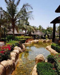 Beautiful views and thatched gazebos at Sofitel Dubai The Palm Resort & Spa Palm Resort, Resort Spa, Small Gazebo, Sofitel Hotel, Garden Gazebo, Concrete Jungle, Hotels And Resorts, Dubai, Travel Photography