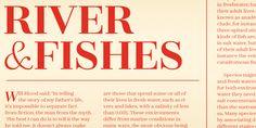 Zahrah - Webfont & Desktop font « MyFonts