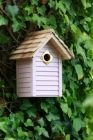 New England Nest Box Pastel Pink