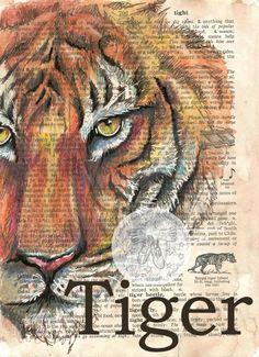 Druck: Tiger-Gemischte Medien Zeichnung auf Wörterbuch-Seite