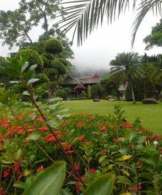 บ้านกลางดอย รีสอร์ท เชียงใหม่ หลบหนีความวุ่นวาย เสาะหาความสงบ สะดวกสบาย ร่มรื่น แวดล้อมด้วยธรรมชาติ เปี่ยมไปด้วยเสน่ห์อันงดงาม  For more information and reservation, Please call : 084 259 2278 or 099 293 2845 Email : double_tai@hotmail.com  Baanklangdoi Resort บ้านกลางดอย รีสอร์ท http://2755vip.wix.com/baanklangdoi-resort