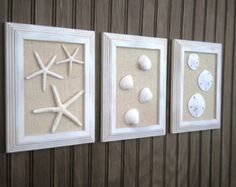 Coastal Decor Trio of Sea Shell Wall Art, Cottage Chic, Starfish Beach Wall Art, Sea Shells Home Decor,  Starfish Art, MODERN VINTAGE STYLE