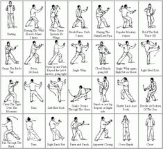 Tai Chi 24 form moves in easy pictures with English names - find other languages in the blog post