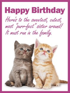 To My Purrfect Sister