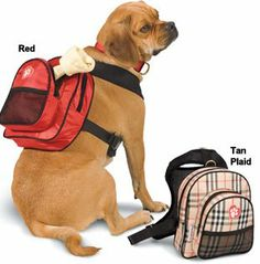 SarahTom 7-Inch Pet Backpack for Dogs, Red - http://thepuppy.org/sarahtom-7-inch-pet-backpack-for-dogs-red/