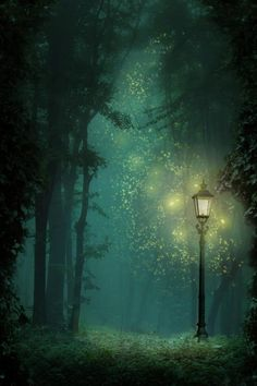 I imagine this as fairies gathering around the lamp post in Narnia. 3d Fantasy, Fantasy World, Fantasy Forest, Natur Wallpaper, Chronicles Of Narnia, Httyd, Oeuvre D'art, Enchanted, Fairy Tales