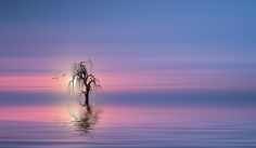 SOUL  SEARCHING SUN by Christian Wig on 500px