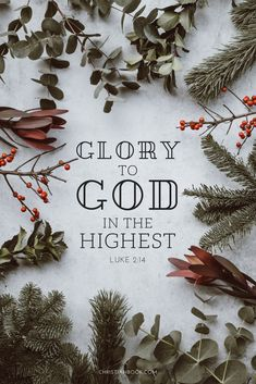 Glory to God in the highest, and on earth peace, good will toward men. - Luke 2:14